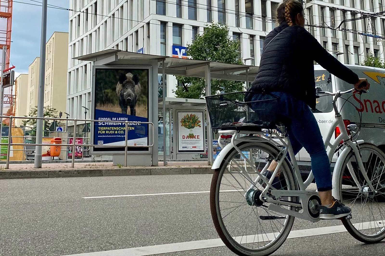 Schiffmann plakatiert als Spende 300 Plakate für Tierschutzverein Freiburg